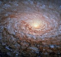 Galáxia do Girassol