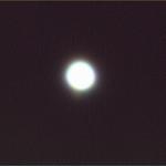Estrela Adhara – Constelação do Cão Maior